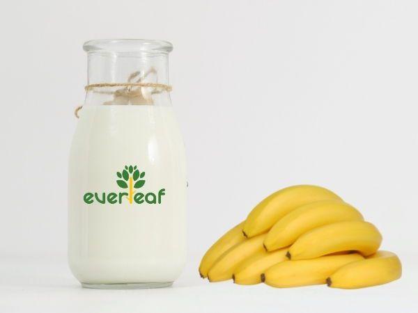 100% Organic Synbiotic Soy Vegan Yogurt (Banana)