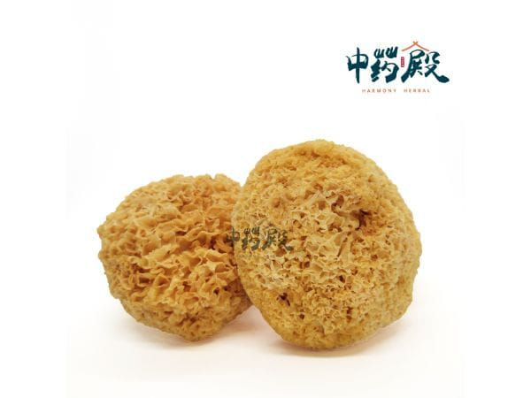 Selected Snow Fungus Without Sulfur 黄金雪耳(无磺) 100GM