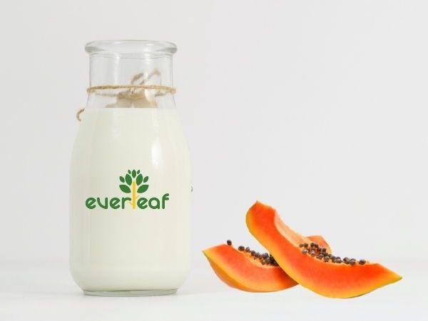 100% Organic Synbiotic Soy Vegan Yogurt (Papaya)