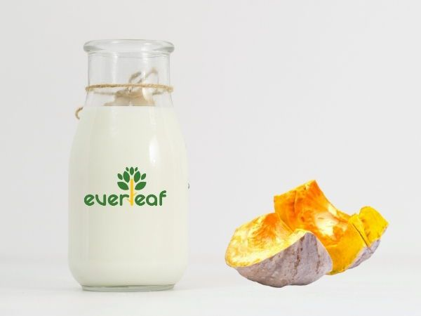 100% Organic Synbiotic Soy Vegan Yogurt (Pumpkin)