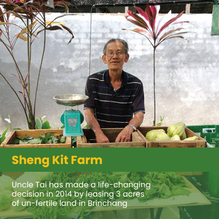 Sheng Kit Farm