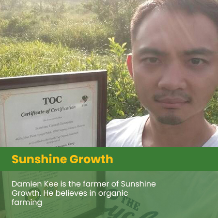 Sunshine Growth